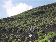 「富士山を測る」のワンシーン