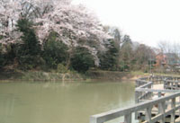 復活した姿見の池